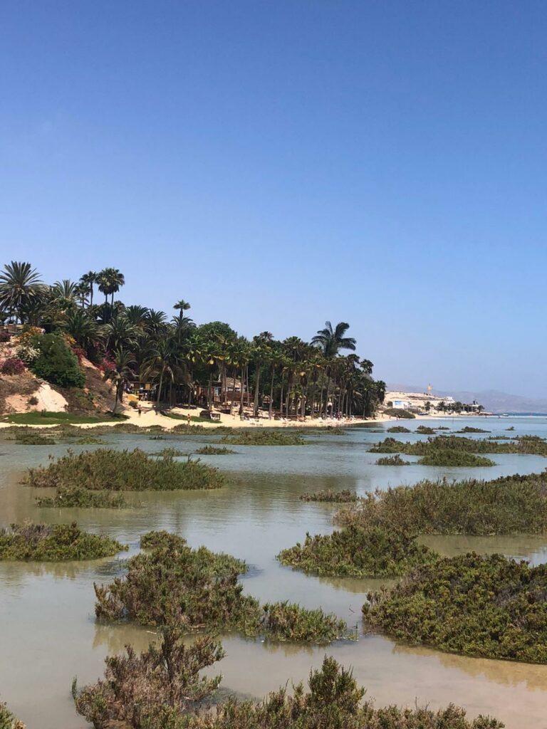 Lagune bei Flut